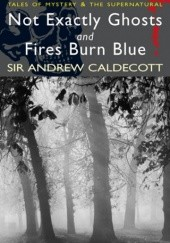 Okładka książki Not Exactly Ghosts and Other Stories with Fires Burn Blue and Other Stories Andrew Caldecott