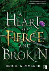 Okładka książki A Heart So Fierce and Broken Brigid Kemmerer